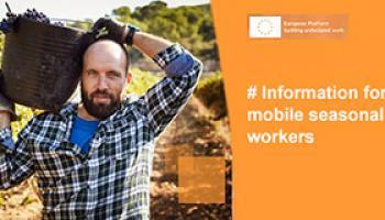 Campaigns mobile seasonal workers brochure thumbnail